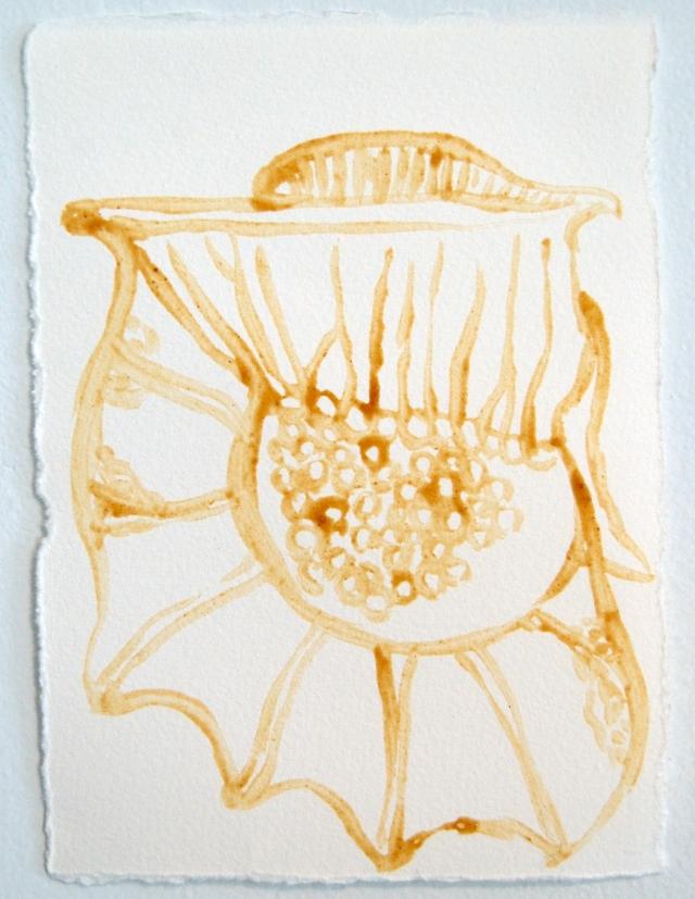 plankton #26